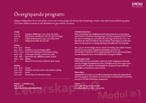Övergripande program